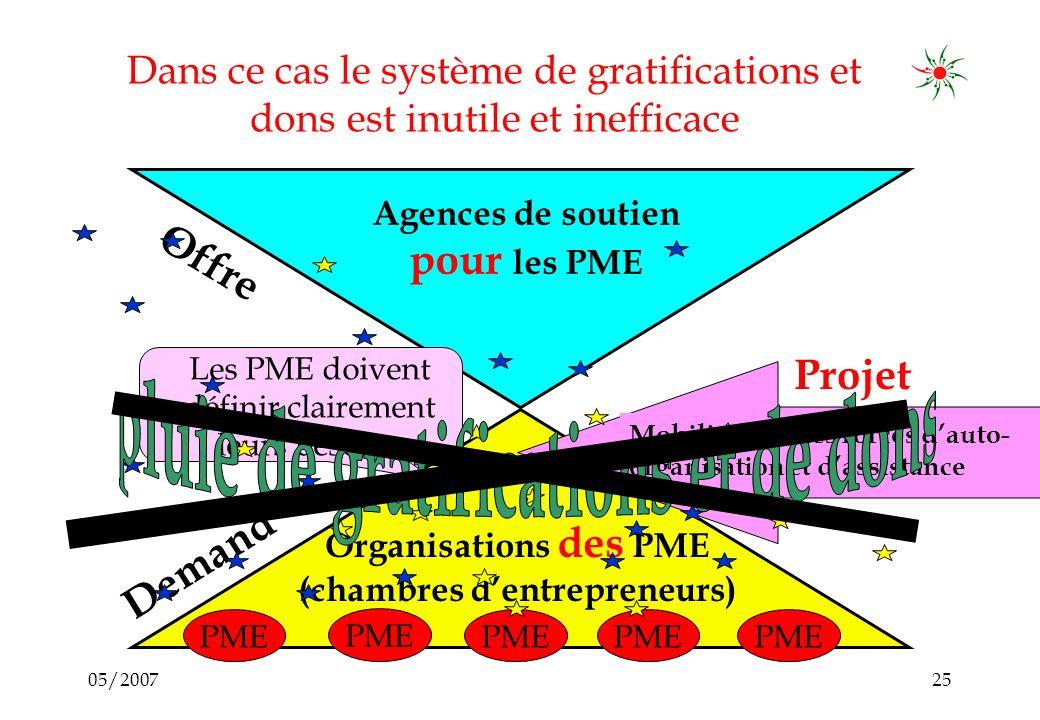 05/200724 Mobilisation des forces dauto organisation : en vue de stimuler, structurer et organiser la demande Agences de soutien pour les PME Demande