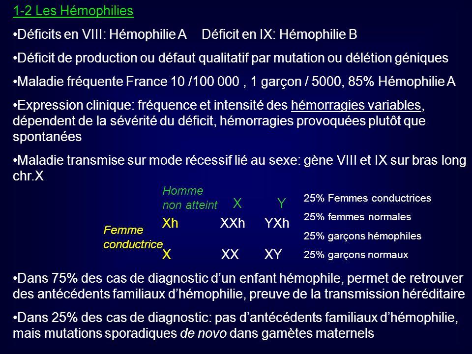 1-2 Les Hémophilies Déficits en VIII: Hémophilie ADéficit en IX: Hémophilie B Déficit de production ou défaut qualitatif par mutation ou délétion géni