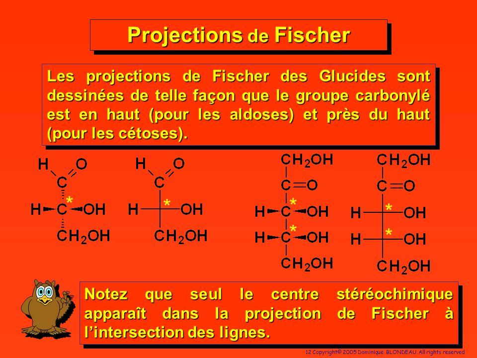 12 Copyright© 2005 Dominique BLONDEAU. All rights reserved Projections de Fischer * * * * * * Notez que seul le centre stéréochimique apparaît dans la