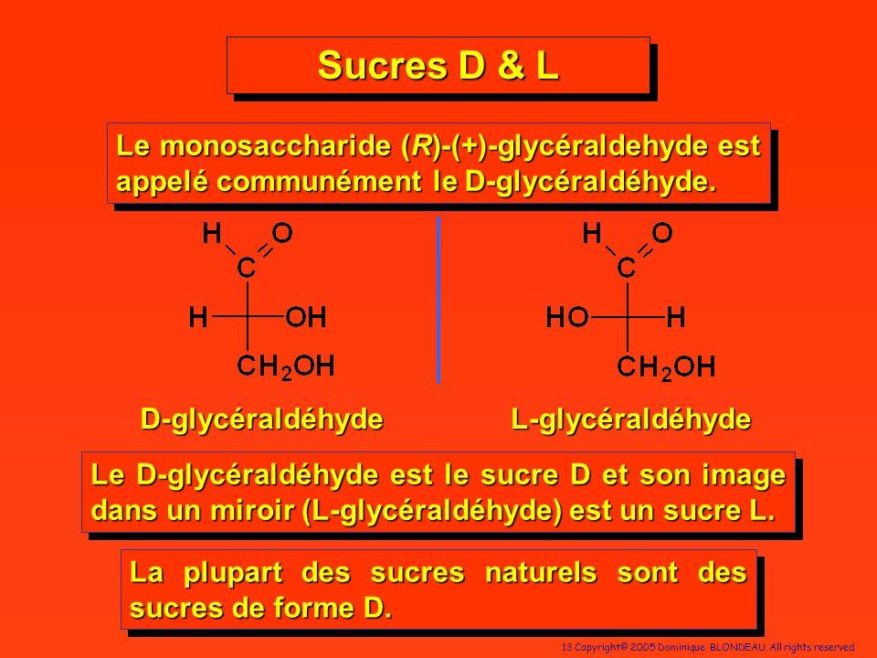 13 Copyright© 2005 Dominique BLONDEAU. All rights reserved Sucres D & L D-glycéraldéhyde Le monosaccharide (R)-(+)-glycéraldehyde est appelé communéme