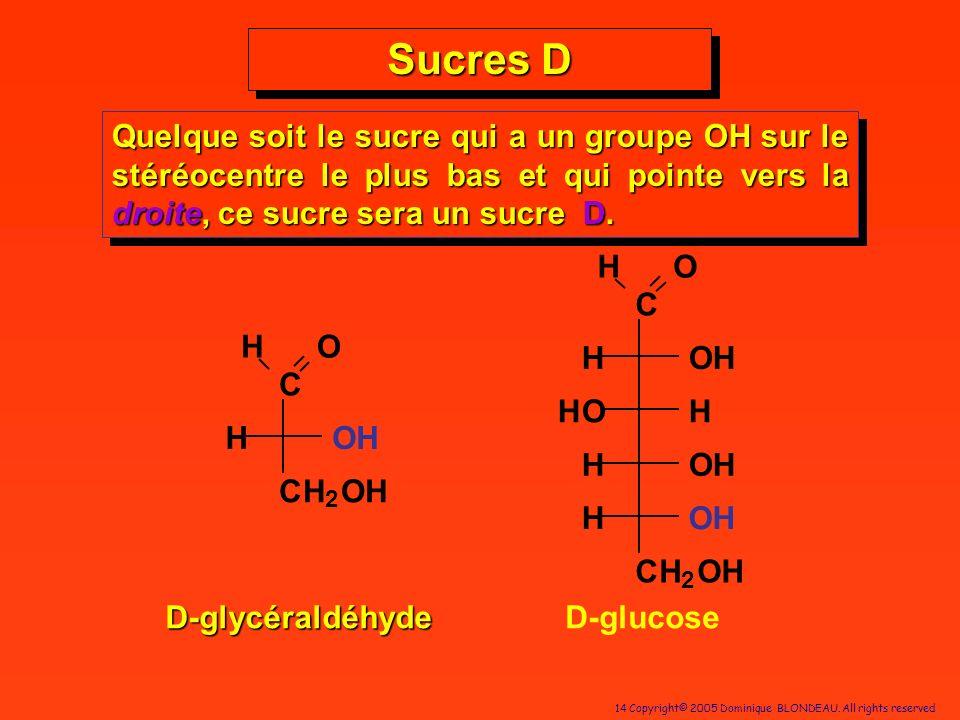 14 Copyright© 2005 Dominique BLONDEAU. All rights reserved Sucres D D-glycéraldéhyde Quelque soit le sucre qui a un groupe OH sur le stéréocentre le p