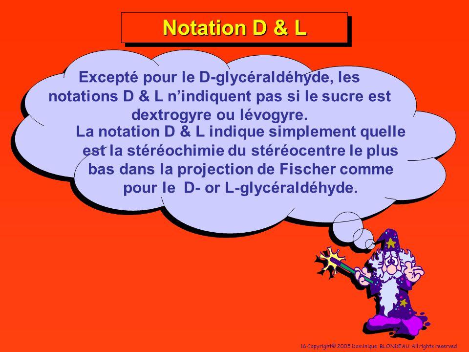16 Copyright© 2005 Dominique BLONDEAU. All rights reserved Notation D & L Excepté pour le D-glycéraldéhyde, les notations D & L nindiquent pas si le s