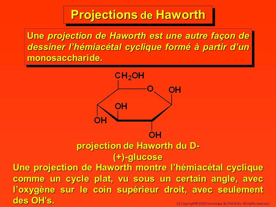 22 Copyright© 2005 Dominique BLONDEAU. All rights reserved Projections de Haworth Une projection de Haworth est une autre façon de dessiner lhémiacéta