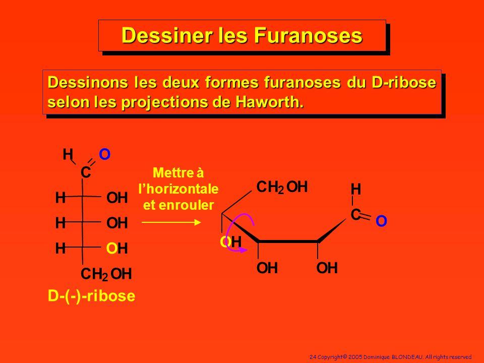 24 Copyright© 2005 Dominique BLONDEAU. All rights reserved Dessiner les Furanoses Dessinons les deux formes furanoses du D-ribose selon les projection