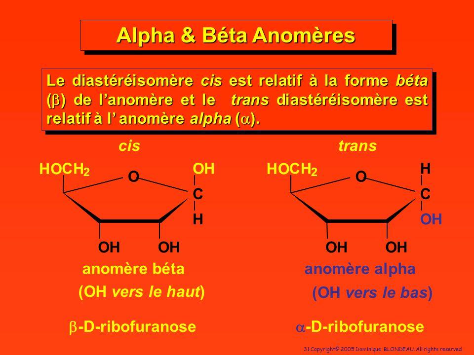 31 Copyright© 2005 Dominique BLONDEAU. All rights reserved Alpha & Béta Anomères Le diastéréisomère cis est relatif à la forme béta ( ) de lanomère et