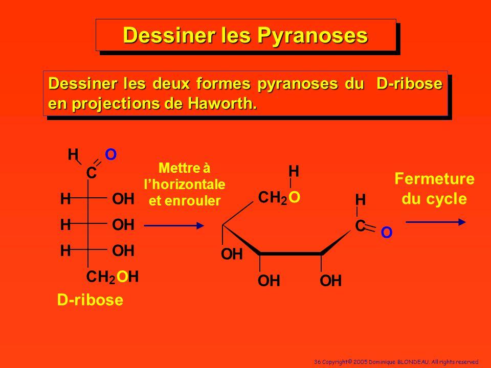 36 Copyright© 2005 Dominique BLONDEAU. All rights reserved Dessiner les Pyranoses Dessiner les deux formes pyranoses du D-ribose en projections de Haw