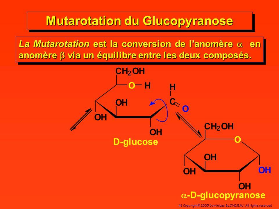 46 Copyright© 2005 Dominique BLONDEAU. All rights reserved C OH OH H O OH CH 2 OH OH O OH CH 2 OH OH OH OH Mutarotation du Glucopyranose -D-glucopyran