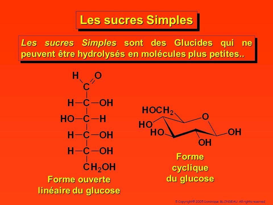 5 Copyright© 2005 Dominique BLONDEAU. All rights reserved Les sucres Simples Forme cyclique du glucose Les sucres Simples sont des Glucides qui ne peu