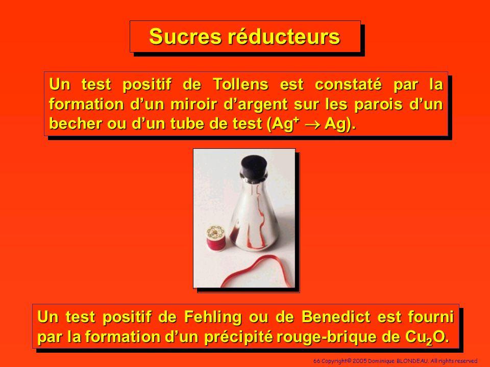66 Copyright© 2005 Dominique BLONDEAU. All rights reserved Un test positif de Tollens est constaté par la formation dun miroir dargent sur les parois