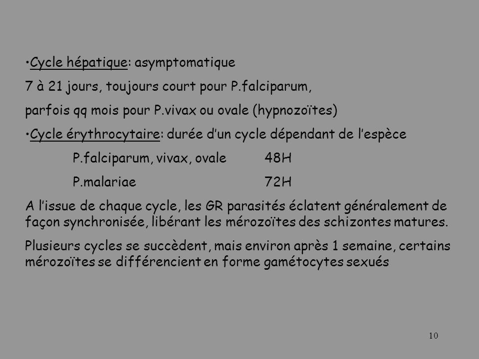 10 Cycle hépatique: asymptomatique 7 à 21 jours, toujours court pour P.falciparum, parfois qq mois pour P.vivax ou ovale (hypnozoïtes) Cycle érythrocy