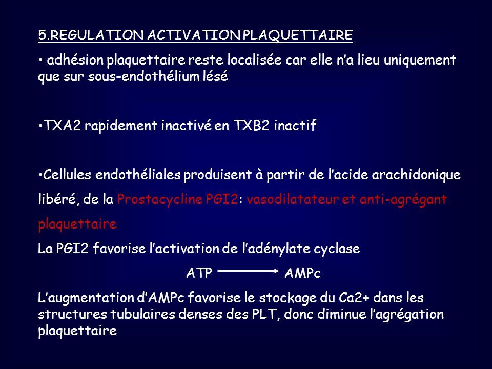 5.REGULATION ACTIVATION PLAQUETTAIRE adhésion plaquettaire reste localisée car elle na lieu uniquement que sur sous-endothélium lésé TXA2 rapidement i