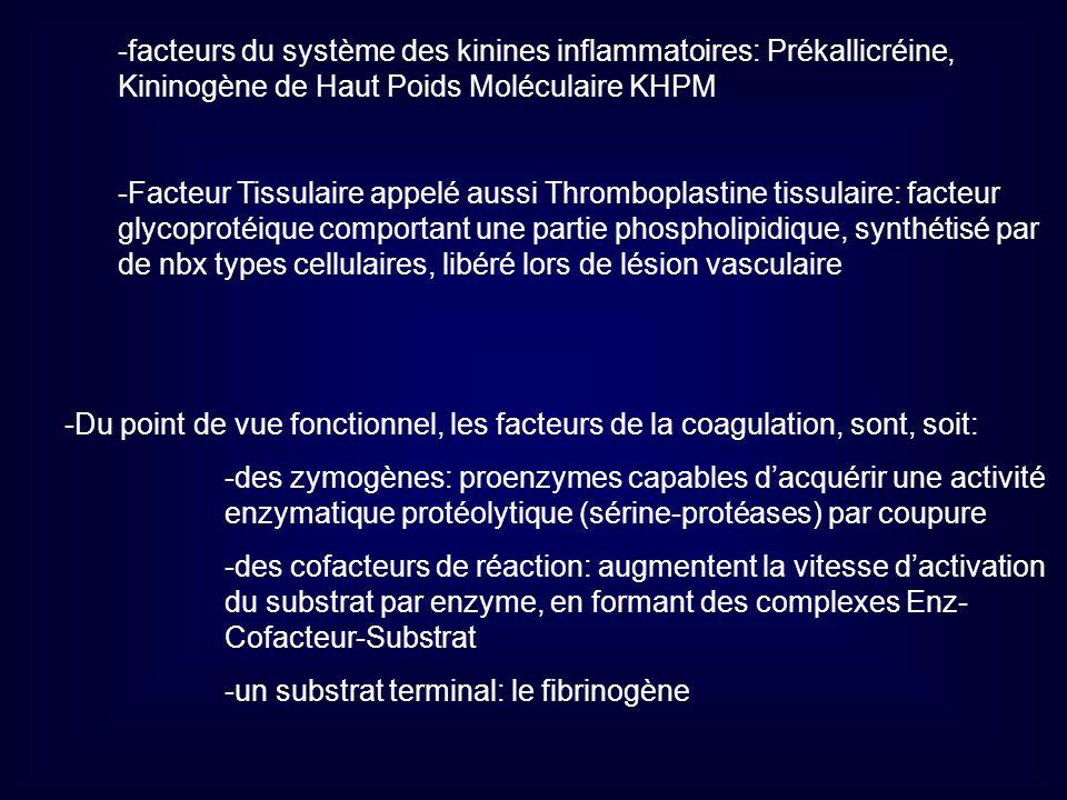 -facteurs du système des kinines inflammatoires: Prékallicréine, Kininogène de Haut Poids Moléculaire KHPM -Facteur Tissulaire appelé aussi Thrombopla