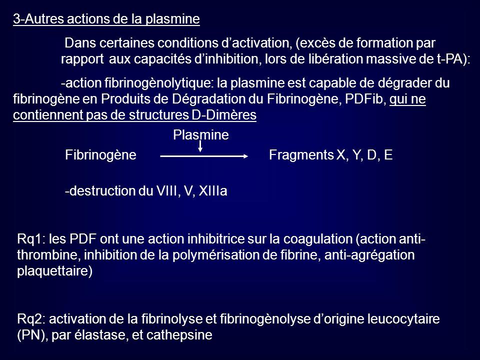 3-Autres actions de la plasmine Dans certaines conditions dactivation, (excès de formation par rapport aux capacités dinhibition, lors de libération m