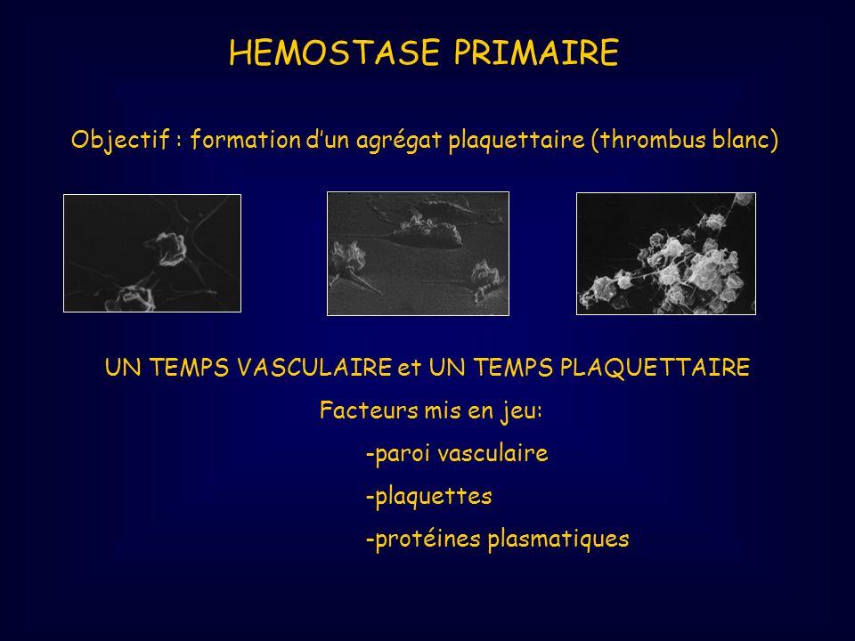 HEMOSTASE PRIMAIRE Objectif : formation dun agrégat plaquettaire (thrombus blanc) UN TEMPS VASCULAIRE et UN TEMPS PLAQUETTAIRE Facteurs mis en jeu: -p