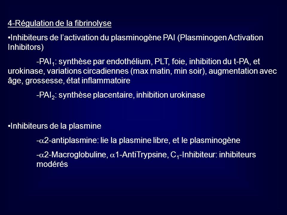 4-Régulation de la fibrinolyse Inhibiteurs de lactivation du plasminogène PAI (Plasminogen Activation Inhibitors) -PAI 1 : synthèse par endothélium, P
