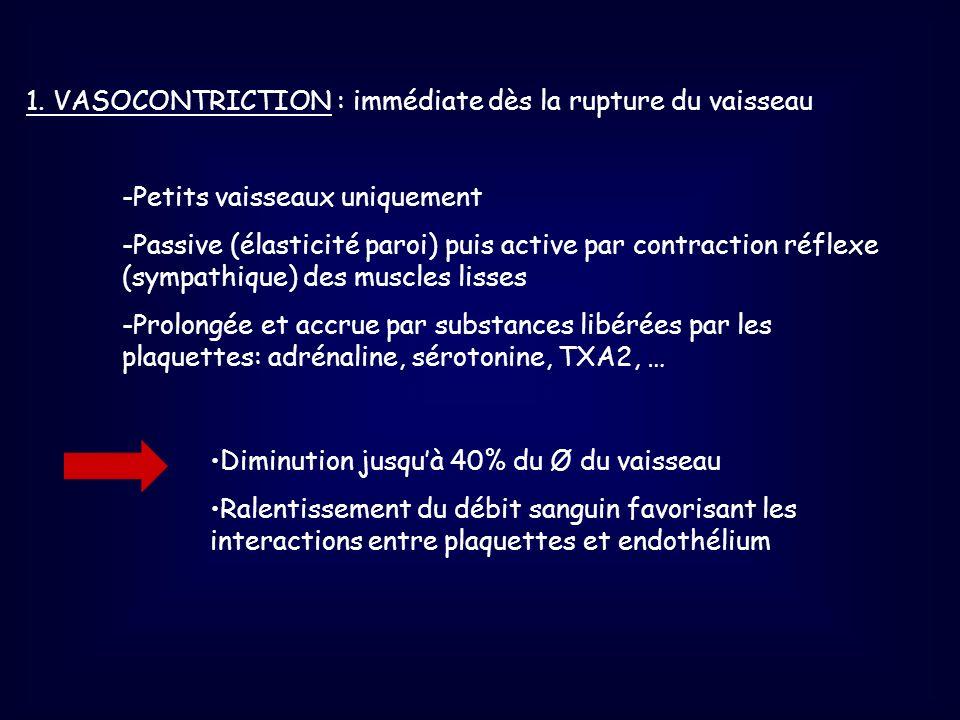 1. VASOCONTRICTION : immédiate dès la rupture du vaisseau -Petits vaisseaux uniquement -Passive (élasticité paroi) puis active par contraction réflexe
