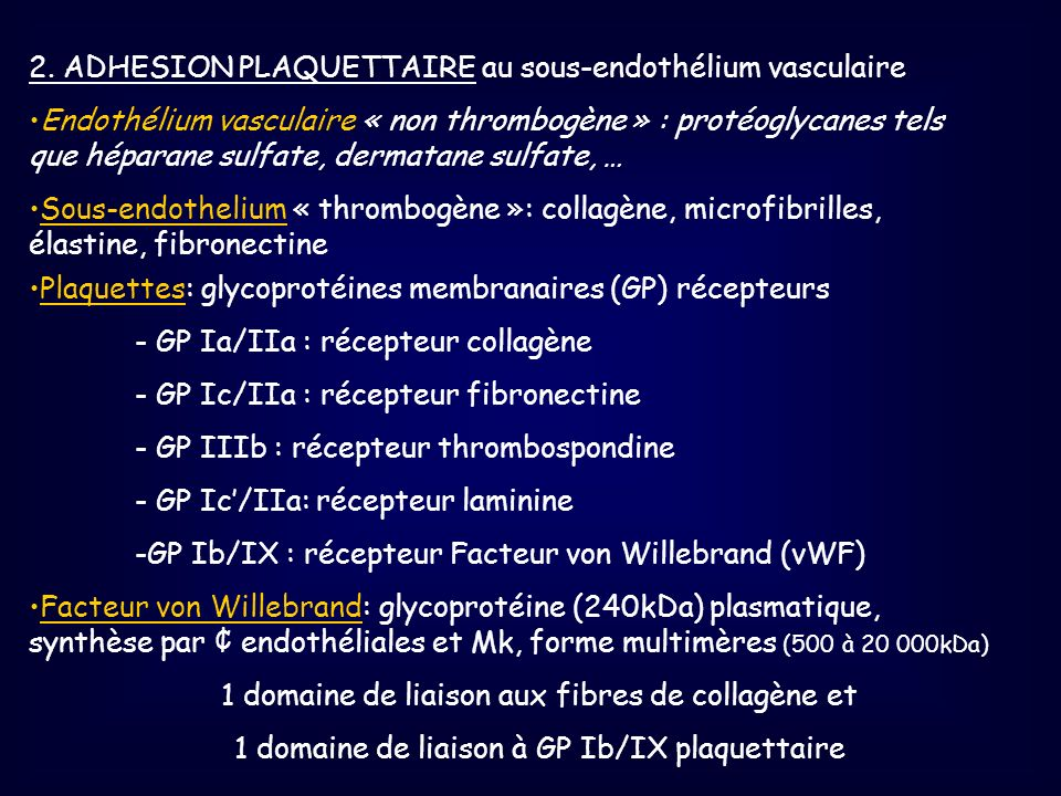 2. ADHESION PLAQUETTAIRE au sous-endothélium vasculaire Endothélium vasculaire « non thrombogène » : protéoglycanes tels que héparane sulfate, dermata