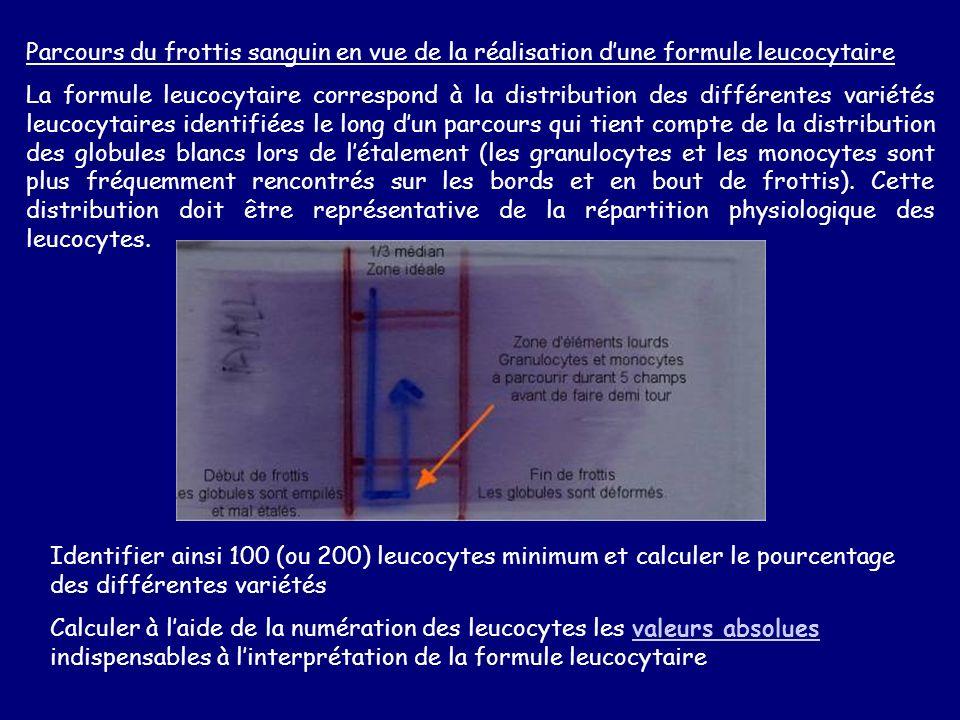 Parcours du frottis sanguin en vue de la réalisation dune formule leucocytaire La formule leucocytaire correspond à la distribution des différentes va