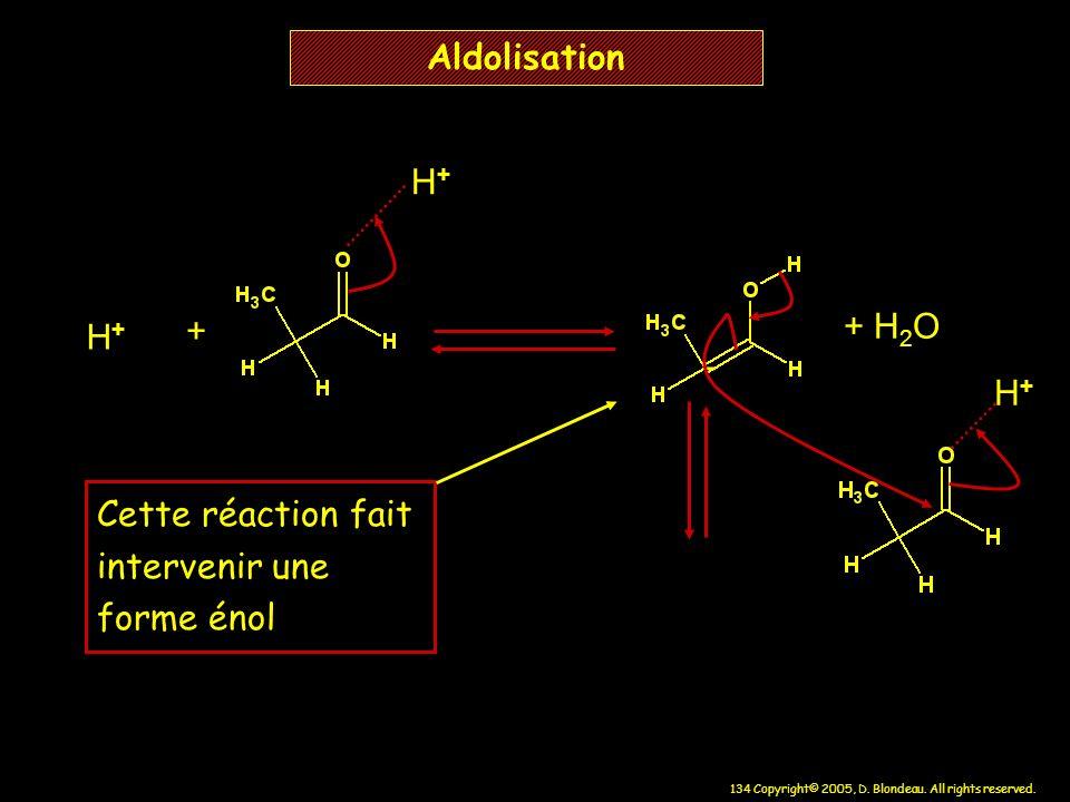 134 Copyright© 2005, D. Blondeau. All rights reserved. Aldolisation H+H+ - + H 2 O + H+H+ H+H+ Cette réaction fait intervenir une forme énol