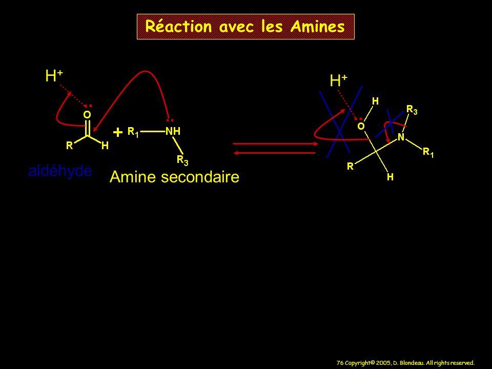 76 Copyright© 2005, D. Blondeau. All rights reserved. Réaction avec les Amines.. H+H+ aldéhyde Amine secondaire.. H+H+