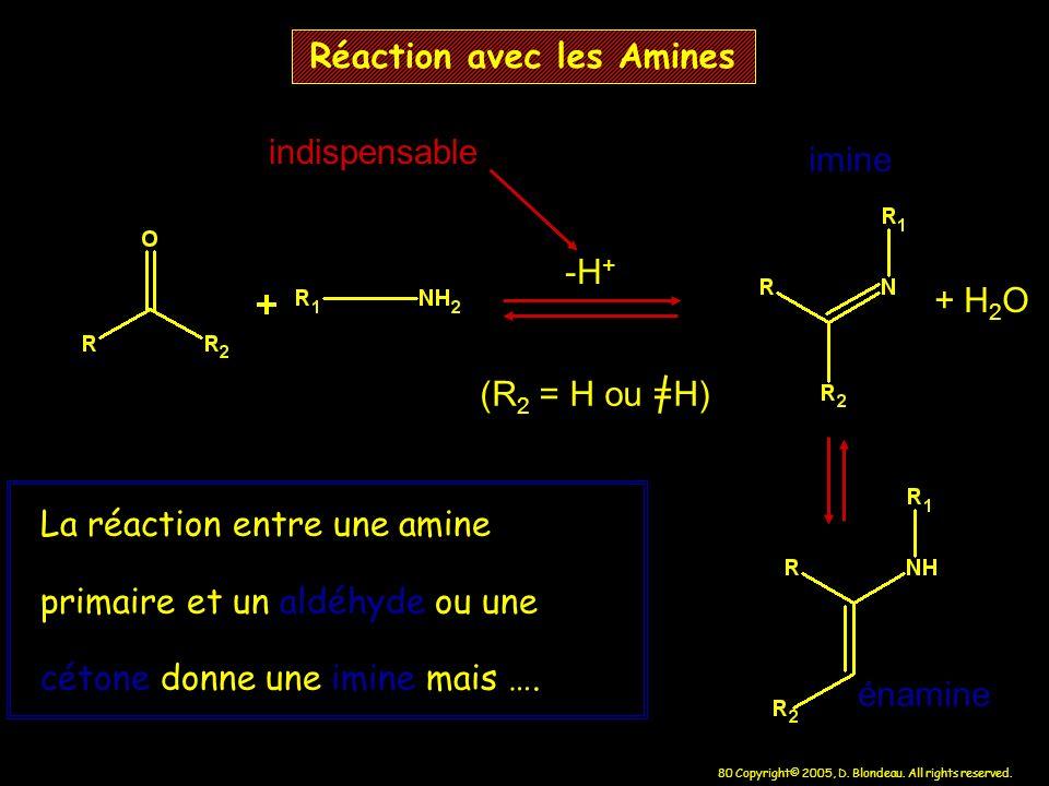 80 Copyright© 2005, D. Blondeau. All rights reserved. Réaction avec les Amines -H + + H 2 O (R 2 = H ou =H) La réaction entre une amine primaire et un