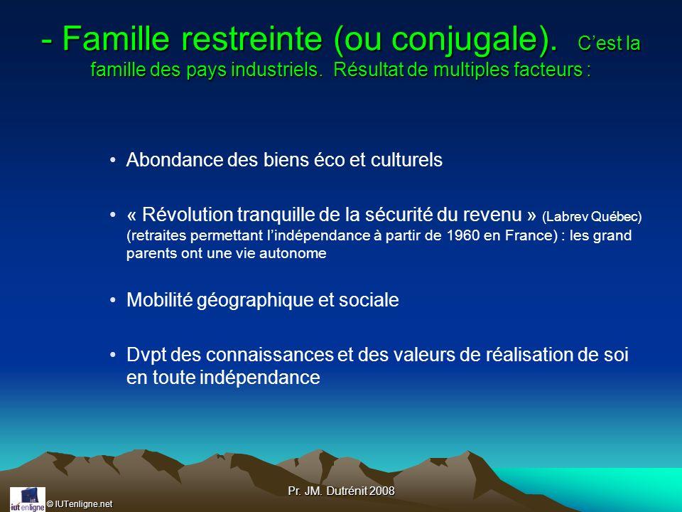 © IUTenligne.net Pr. JM. Dutrénit 2008 - Famille restreinte (ou conjugale). Cest la famille des pays industriels. Résultat de multiples facteurs : Abo