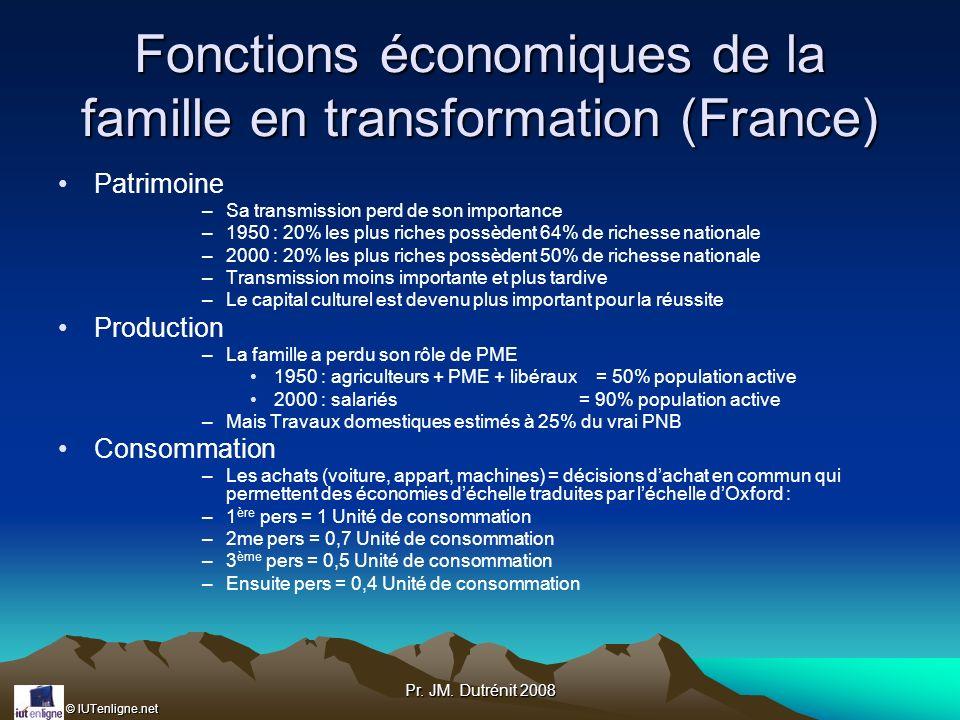 © IUTenligne.net Pr. JM. Dutrénit 2008 Fonctions économiques de la famille en transformation (France) Patrimoine –Sa transmission perd de son importan