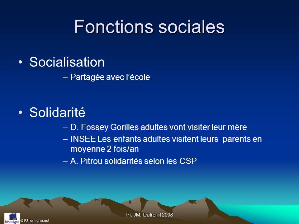 © IUTenligne.net Pr. JM. Dutrénit 2008 Fonctions sociales Socialisation –Partagée avec lécole Solidarité –D. Fossey Gorilles adultes vont visiter leur