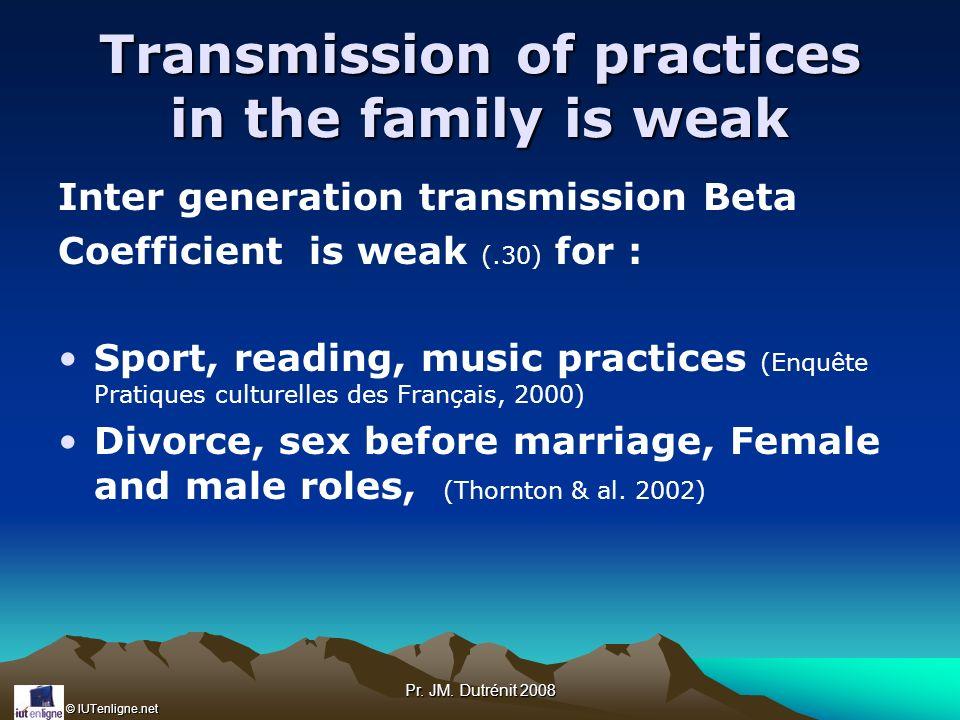 © IUTenligne.net Pr. JM. Dutrénit 2008 Transmission of practices in the family is weak Inter generation transmission Beta Coefficient is weak (.30) fo
