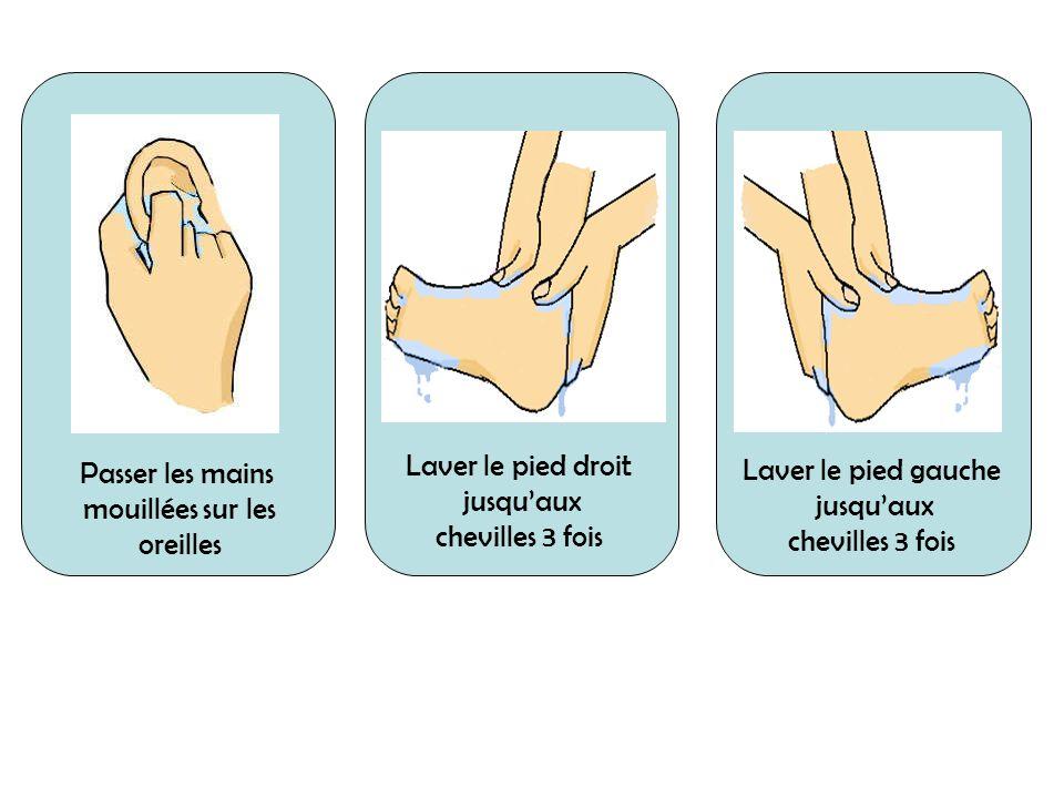 Laver le pied droit jusquaux chevilles 3 fois Passer les mains mouillées sur les oreilles Laver le pied droit jusquaux chevilles 3 fois Laver le pied