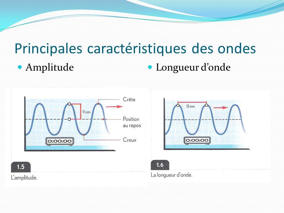 Principales caractéristiques des ondes Amplitude Longueur donde