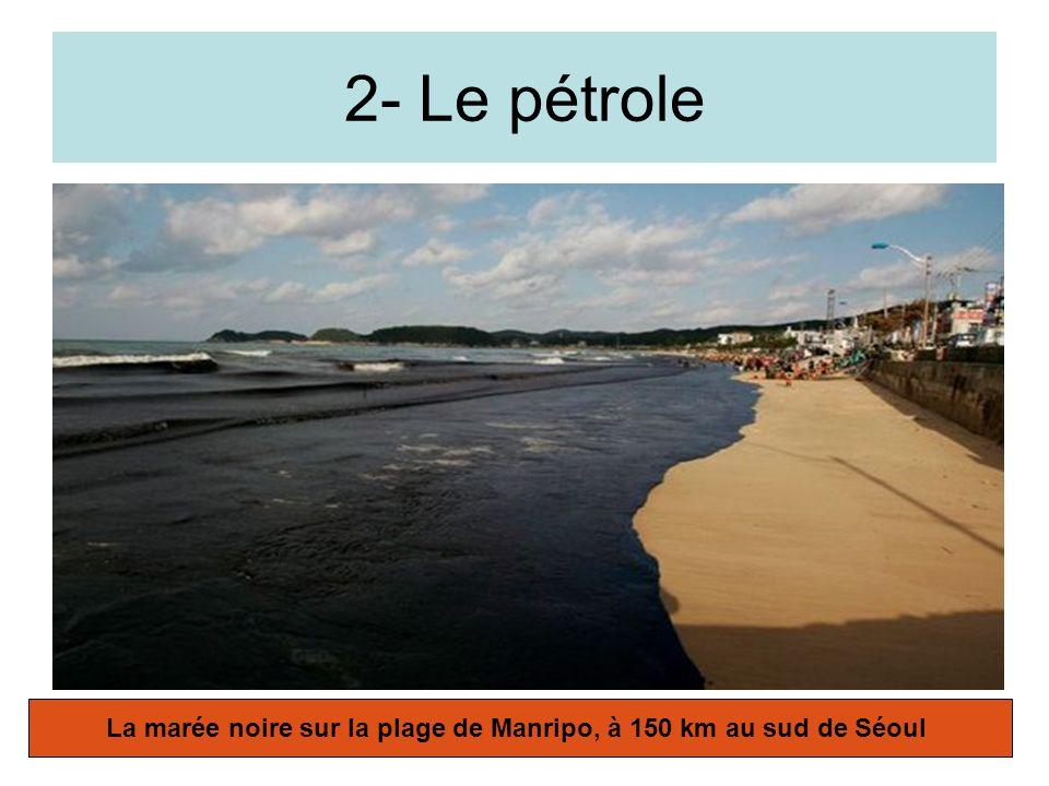 Le gaz naturel L Egypte fournit 8,4% du gaz de Gaz de France