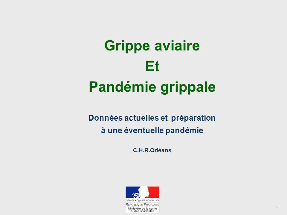 1 Grippe aviaire Et Pandémie grippale Données actuelles et préparation à une éventuelle pandémie C.H.R.Orléans