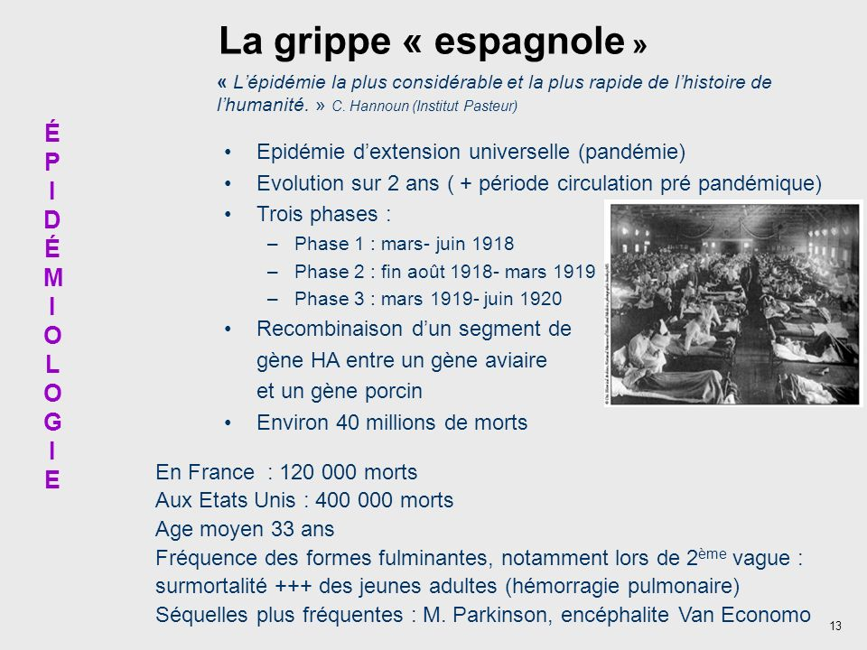 13 La grippe « espagnole » « Lépidémie la plus considérable et la plus rapide de lhistoire de lhumanité. » C. Hannoun (Institut Pasteur) En France : 1