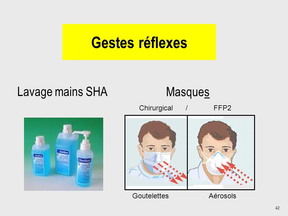 42 Gestes réflexes Lavage mains SHA Masques Chirurgical / FFP2 Goutelettes Aérosols