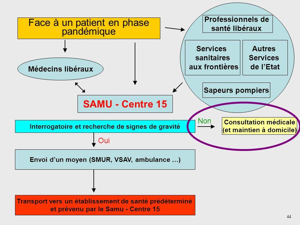 44 Face à un patient en phase pandémique Médecins libéraux Professionnels de santé libéraux Services sanitaires aux frontières Autres Services de lEta