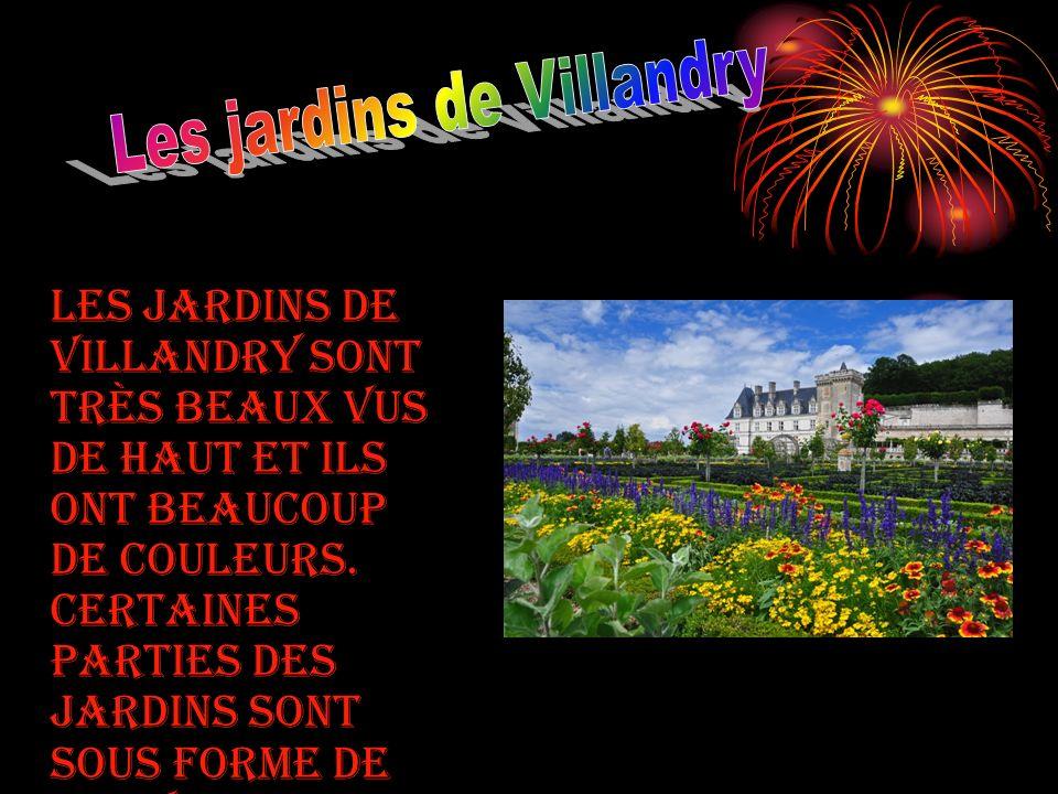Les jardins de Villandry sont très beaux vus de haut et ils ont beaucoup de couleurs.