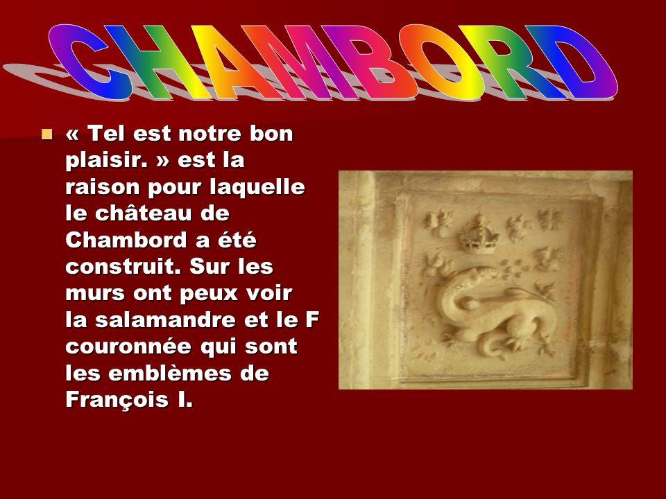 « Tel est notre bon plaisir. » est la raison pour laquelle le château de Chambord a été construit. Sur les murs ont peux voir la salamandre et le F co