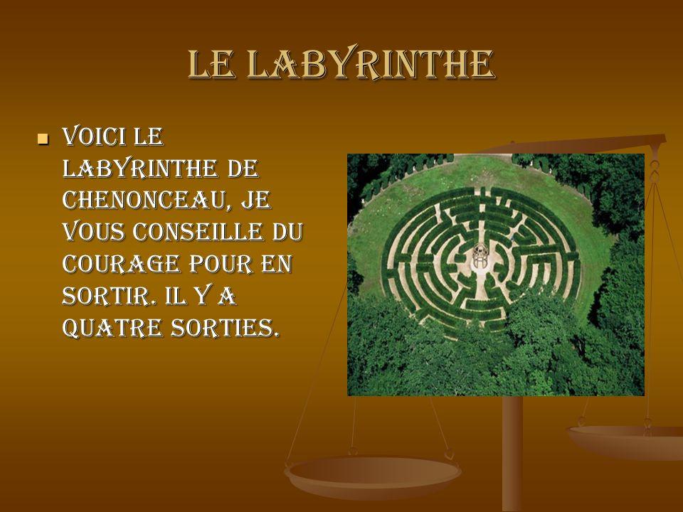 Le labyrinthe Voici le labyrinthe de Chenonceau, je vous conseille du courage pour en sortir. Il y a quatre sorties. Voici le labyrinthe de Chenonceau