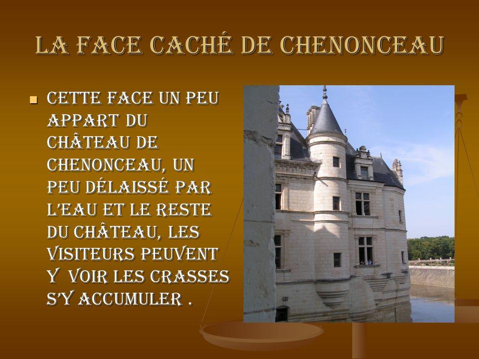 La face caché de Chenonceau Cette face un peu appart du château de Chenonceau, un peu délaissé par leau et le reste du château, les visiteurs peuvent