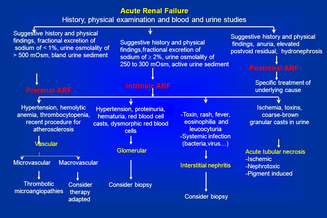 Acute Renal Failure History, physical examination and blood and urine studies Suggestive history and physical findings, fractional excretion of sodium