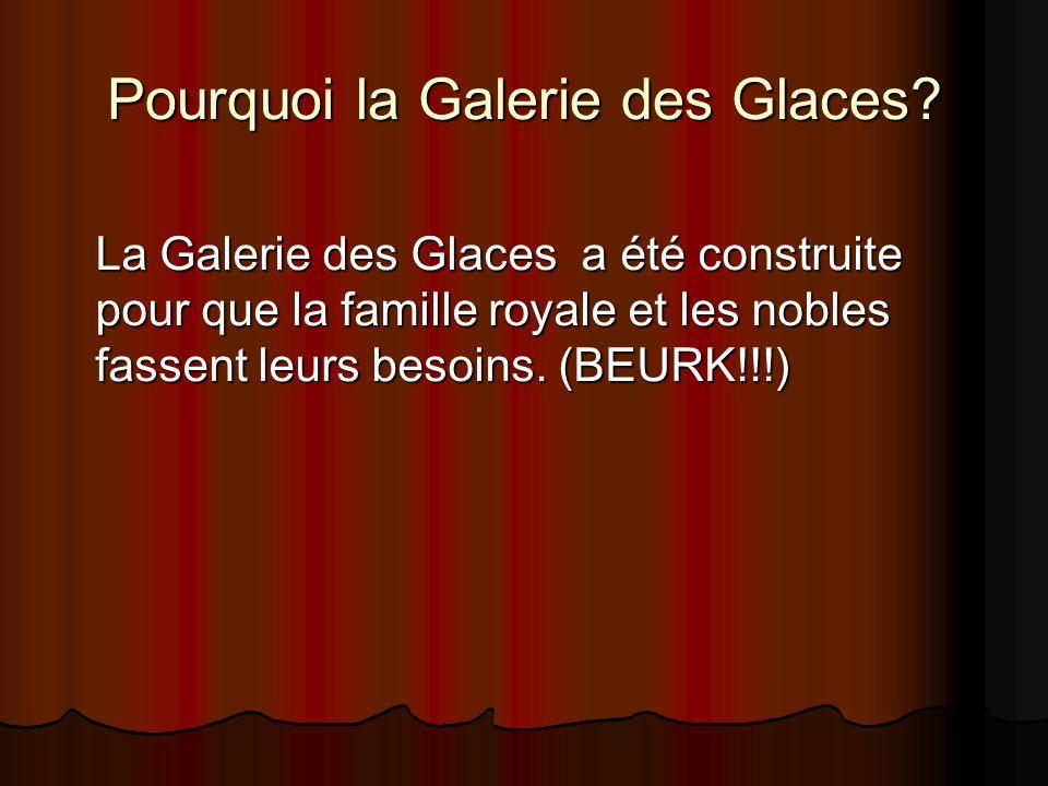 Pourquoi la Galerie des Glaces? La Galerie des Glaces a été construite pour que la famille royale et les nobles fassent leurs besoins. (BEURK!!!)