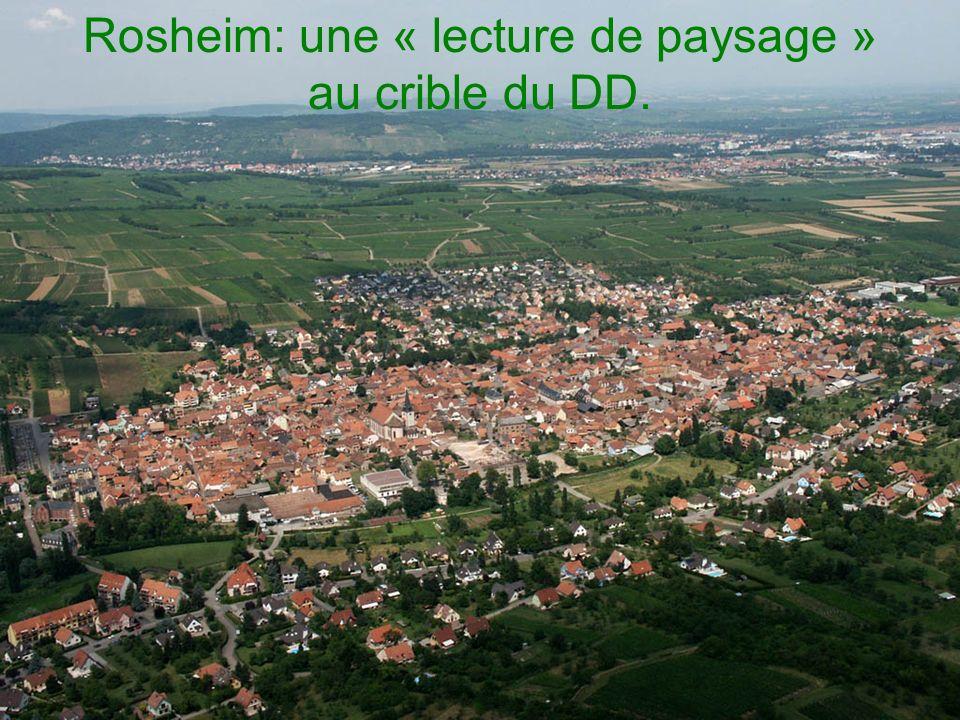 Rosheim: une « lecture de paysage » au crible du DD.