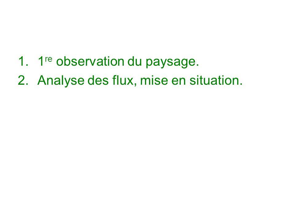 1.1 re observation du paysage. 2.Analyse des flux, mise en situation.