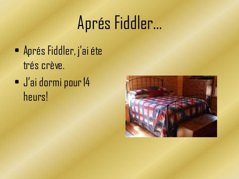 Aprés Fiddler… Aprés Fiddler, jai éte trés crève. Jai dormi pour 14 heurs!