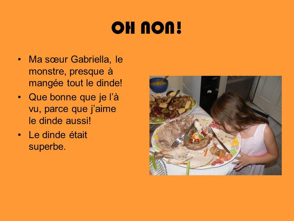 OH NON! Ma sœur Gabriella, le monstre, presque à mangée tout le dinde! Que bonne que je là vu, parce que jaime le dinde aussi! Le dinde était superbe.