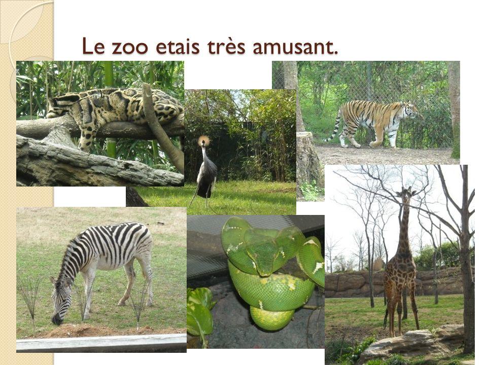 Le zoo etais très amusant.