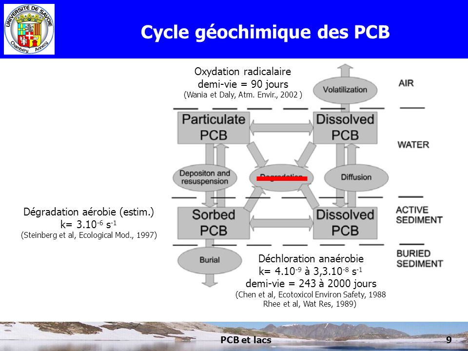 PCB et lacs20 Flux moyens de PCB Gross primary production of phytoplankton = dominate load of organic carbon solids.