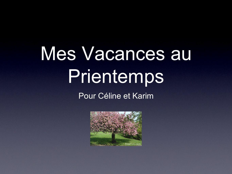 Mes Vacances au Prientemps Pour Céline et Karim