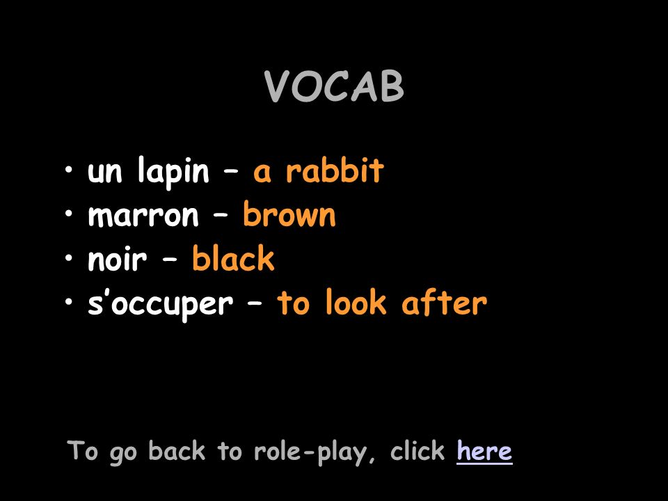 VOCAB un lapin – a rabbit marron – brown noir – black soccuper – to look after To go back to role-play, click herehere